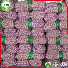 Chinese Fresh Purple Red White Garlic