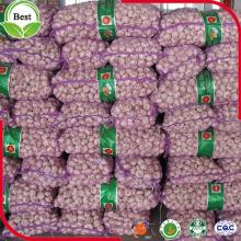 Chinese Fresh Purple Red White Garlic
