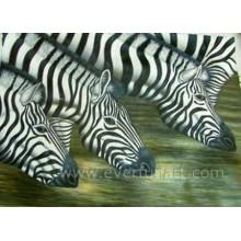Pintura pintada mão da pintura a óleo da zebra