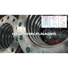 Flange Backing Ring BR Hot Dipped Galvanized Zinc
