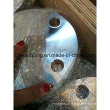 Brides en acier à armature en acier inoxydable
