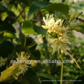 Naturaleza miel de tilo puro