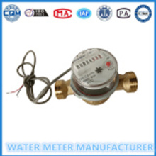 Digital Pulse  Water Meter