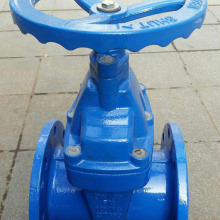 Fast Delivery for Non-Rising Stem Soft Seal Gate Valve Bright bar iron gate valve supply to Burkina Faso Suppliers