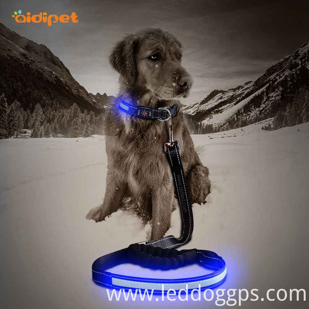 Led Lighted Dog Lead