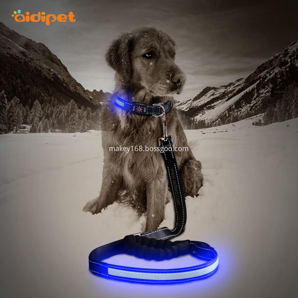 Led Lighted Dog Lead