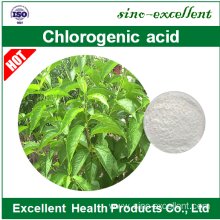 Low MOQ for Natural Active Monomer 98% honeysuckle chlorogenic acid export to China Manufacturers