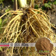 USP Nlt 0.3% Valeric Acid Valerian Root Extract