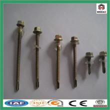 Screw/Drywall Screw/bulgy screw