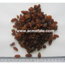 China suppliers best price red raisin