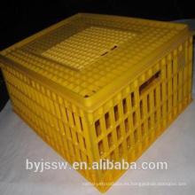 Cajas de plástico de aves vivas