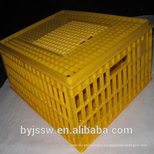 Live Poultry Plastic Crate
