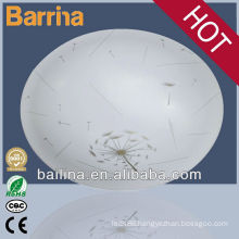 Hot selling household LED ceiling light