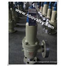 Petro SA 320bar High Pressure Safety Valve (A42Y-2500LB)