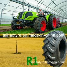 Farm Tire, Tractor Trailer Tire, Agriculture Tire, Agricultural Tire (R1)