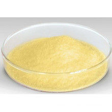 Fornecimento de fábrica Kaempferol 98% / CAS não: 520-18-3 / Kaempferia Galanga L Extract