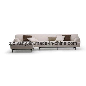 Meubles de maison tissu canapé meubles (D-79)