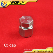 high pressure 130bar gas stainless steel pipe end cap tube fittings