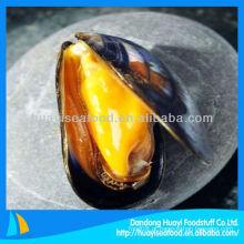 Alta qualidade cozinhar mexilhões meia shell congelados