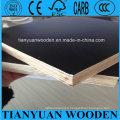 Contreplaqué marin de noyau plein d'eucalyptus de 12mm, contreplaqué face à film