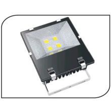 COB LED Floodlighting (FDL09-B)