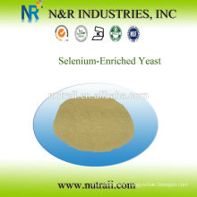 Reliable supplier Selenium-Enriched Yeast or Selenium Yeast feed additives