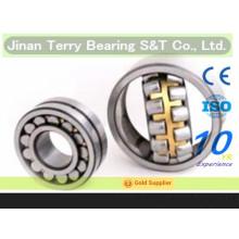 Os rolamentos de rolo cilíndricos de baixo ruído de alta qualidade (NN3006)