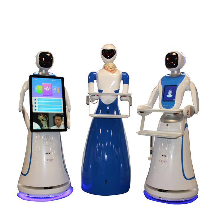 Intelligence Service Robot