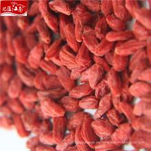 Bolso níspero a granel de alta calidad con bayas de Goji
