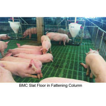 BMC Floor Composite in Farm Pig