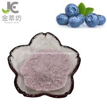 High qualtiy blueberry fruit juice powder