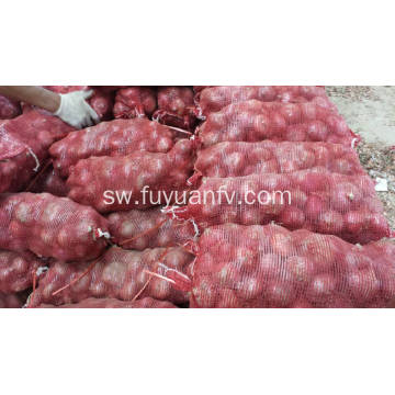 Export Quality Quality ya Fresh Red vitunguu
