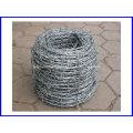 Heißer Verkauf verzinkter oder PVC beschichteter Stacheldraht für Zaun