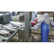 Frozen oilfish fillet rough skin (Ruvettus pretiosus)