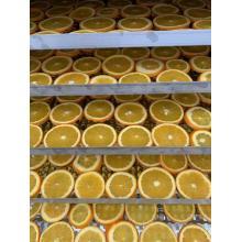 Сухие фрукты Тепловой насос воздушной сушки
