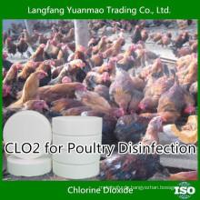Best Quality Veterinary Desinfektionsmittel