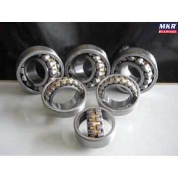 Spherical Roller Bearing 21310