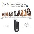 Collier pour chien avec télécommande