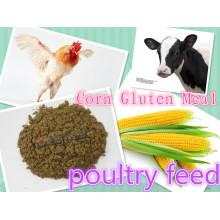 Alta calidad y precio más bajo de harina de gluten de maíz