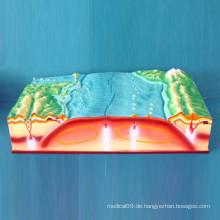 Platten-Tektonik und Oberflächen-Geographie-Modell (R210102)
