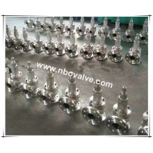 Stainless Steel Direct Sealing Spring Safety Valve (A42Y)