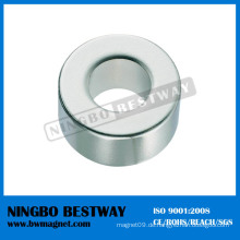 Kundenspezifischer mehrpoliger Permanentmagnet-Ring