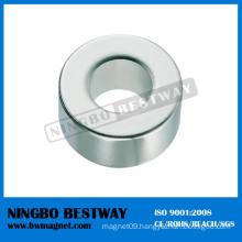 Custom Multipole Permanent Magnet Ring