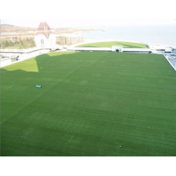 Landscape Field Artificial Grass