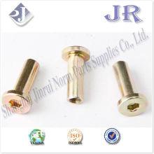 Vis mâles et femelles zinc jaune TS16949 ISO9001