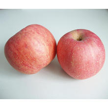 Chinese Fresh FUJI Apple
