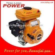 Motor de gasolina de potencia opcional 160f, CE certificar productos