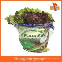 Guangzhou benutzerdefinierte frische Gemüse Verpackung Tasche / luftdichte Verpackung Tasche / frisches Gemüse Verpackung Plastiktüte