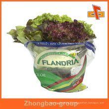 Guangzhou custom fresh vegetable packaging bag/airtight packaging bag/fresh vegetables packaging plastic bag