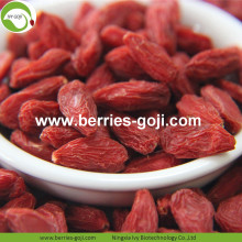 Dark Red Natural Premium Dry Conventional Goji Berries